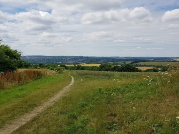 Looking back over Winchester
